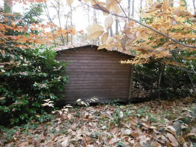Woodland Cabin in Almost One Hectare