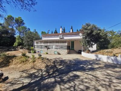 House on Two Hectares with Guest Gite